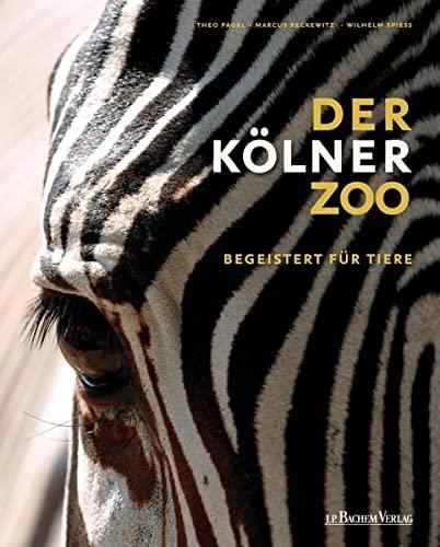 9783761623398: Kölner Zoo: Begeistert für Tiere