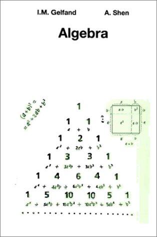 9783764336776: Algebra