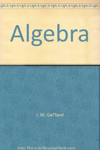 9783764337377: Algebra