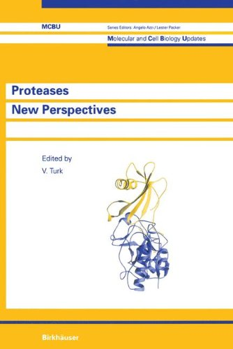 9783764357894: Proteases New Perspectives (Molecular and Cell Biology Updates)