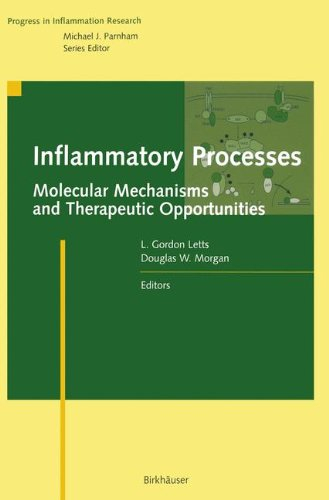 Inflammatory Processes: Molecular Mechanisms and Therapeutic Opportunities