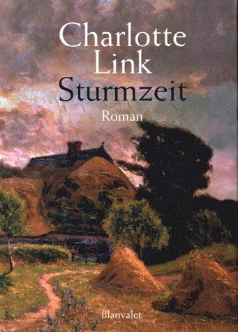 9783764500801: Sturmzeit