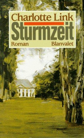9783764569099: Sturmzeit