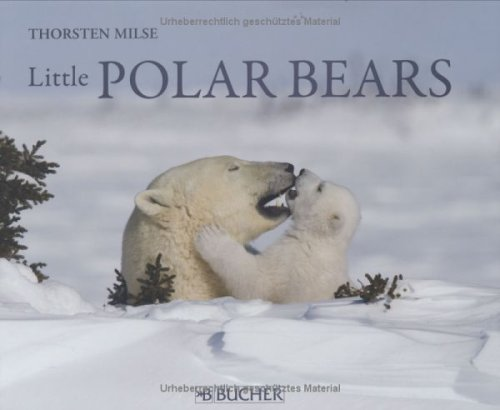 Little Polar Bears: Thorsten Milse