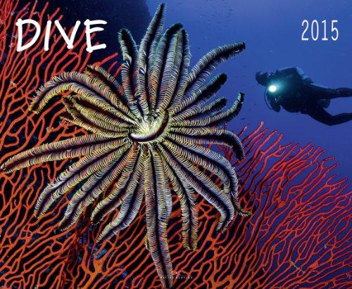 9783768837934: Dive 2015