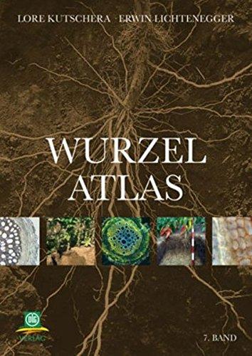 Wurzelatlas 7 der Kulturpflanzen gemäßigter Gebiete mit Arten des Feldgemüsebaues: ...