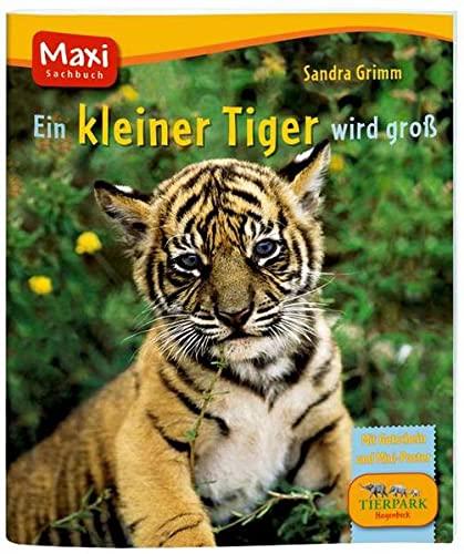 9783770741755: Ein kleiner Tiger wird groß: Mit Gutschein und Mini-Poster