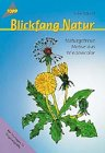 Blickfang Natur. Naturgetreue Motive aus Windowcolor.: Silke Kobold