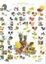 9783774215023: Exoten- Gemüse. Poster.
