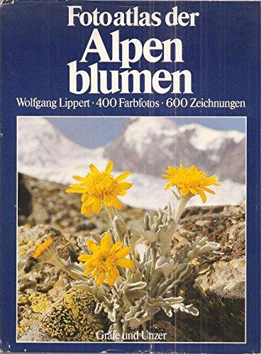 9783774234277: Fotoatlas der Alpenblumen. Blütenpflanzen der Ost- und Westalpen. Das grosse Bestimmungsbuch in Farbe