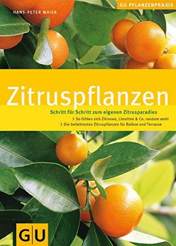 9783774288393: Zitruspflanzen: Schritt für Schritt zum eigenen Zitrusparadies. GU Pflanzenpraxis