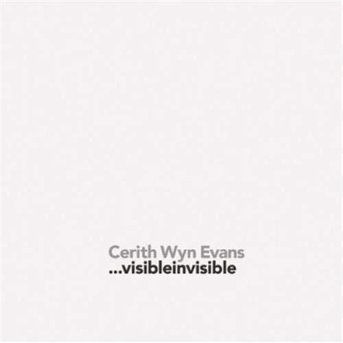 9783775721318: Cerith Wyn Evans Visibleinvisible /Anglais/Espagnol