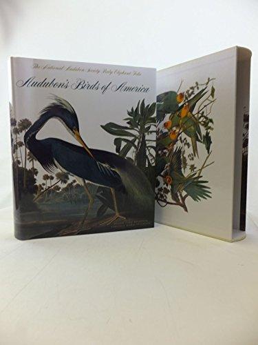 9783777456003: Audubon's Birds of America
