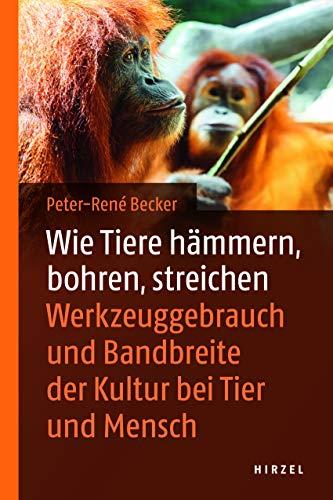 Wie Tiere hämmern, bohren, streichen : Werkzeuggebrauch: Peter-Rene Becker