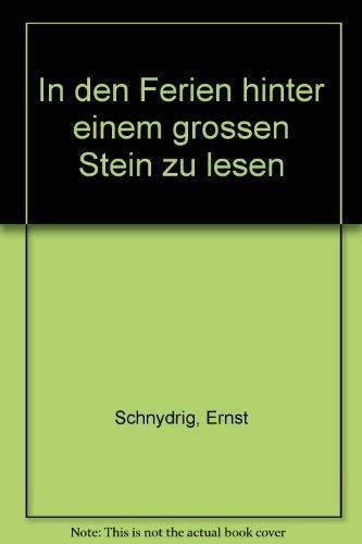 9783782003728: In den Ferien hinter einem grossen Stein zu lesen (German Edition)