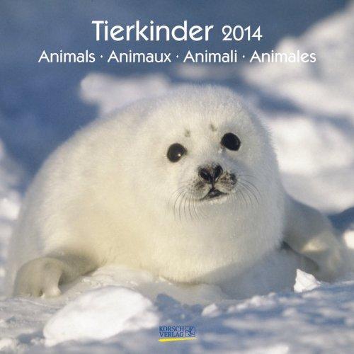 9783782776134: Tierkinder 2014. Brosch�renkalender