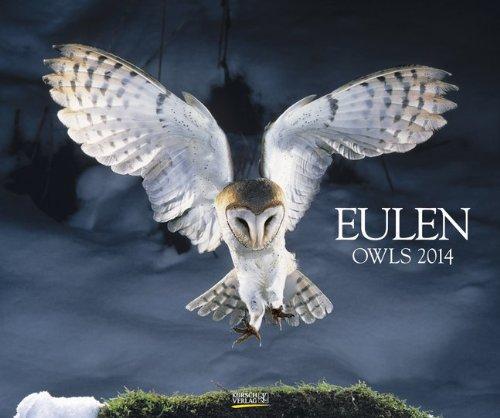 9783782776509: Eulen 2014. PhotoArt Classic Kalender