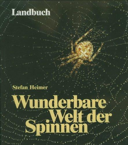 9783784203829: Die wunderbare Welt der Spinnen