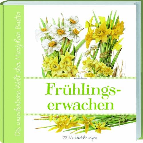 9783784352060: Marjolein Bastins Frühlingserwachen