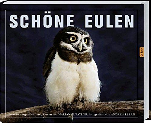 9783784352565: Schöne Eulen