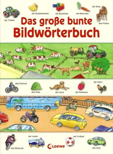 9783785564721: Das große bunte Bildwörterbuch