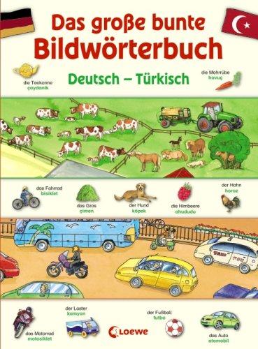 9783785565391: Das große bunte Bildwörterbuch Deutsch - Türkisch