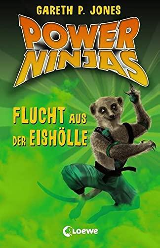 Power Ninjas 03. Flucht aus der Eishölle: Jones, Gareth P.