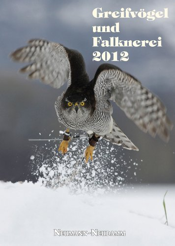 Greifvögel und Falknerei 2012