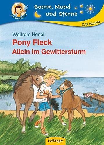 9783789107450: Pony Fleck 06. Allein im Gewittersturm