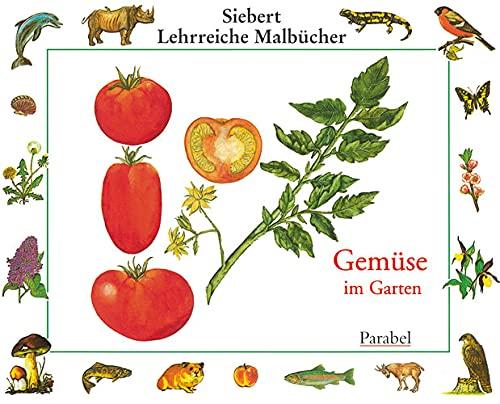 9783789811036: Gemüse im Garten