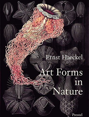 9783791319902: Art Forms in Nature: The Prints of Ernst Haeckel