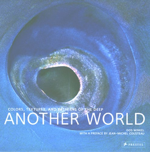 9783791334356: Another World: Colors, Textures, And Patterns of the Deep
