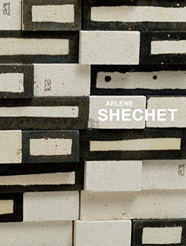 Arlene Shechet: All at Once: Porter, Jenelle, Shechet, Arlene