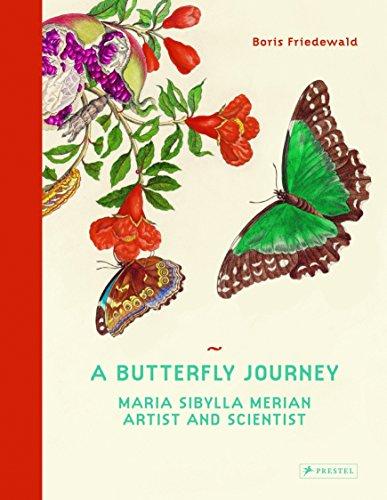 A Butterfly Journey