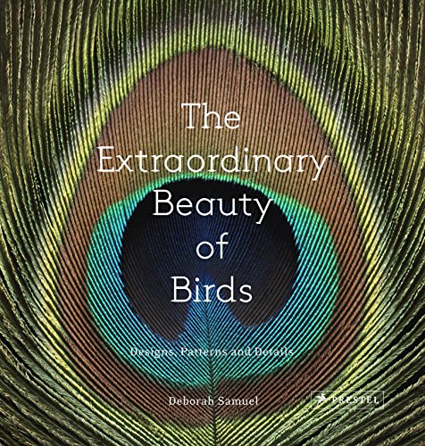 9783791382036: The Extraordinary Beauty Of Birds. Designs Pattern