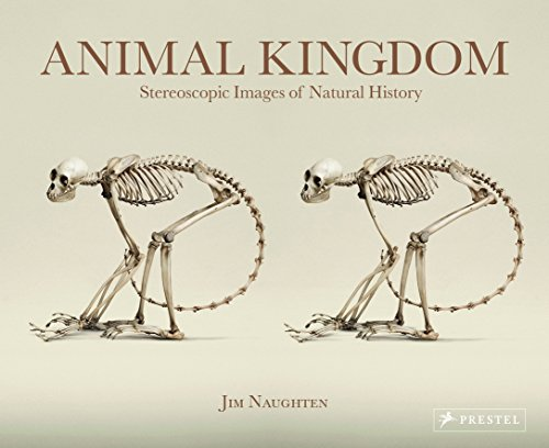 9783791382470: Animal Kingdom: Stereoscopic Images Of Natural History