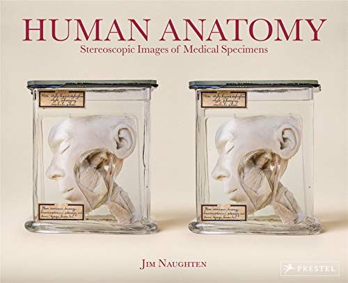 Human Anatomy: Stereoscopic Images of Medical Species