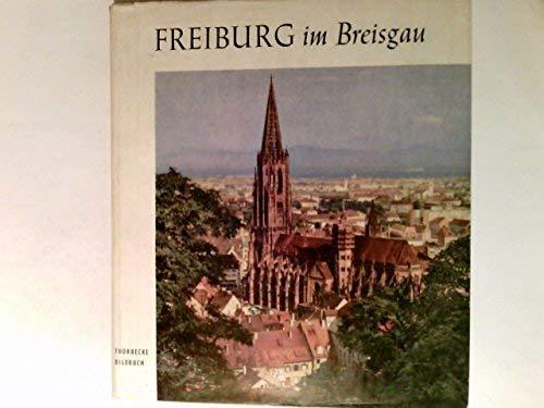 9783793005797: Freiburg