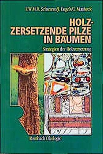 Holzzersetzende Pilze in Bäumen: Francis Schwarze