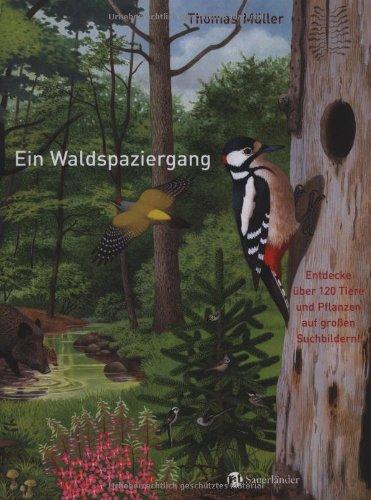 9783794191017: Ein Waldspaziergang: Entdecke über 120 Tiere und Pflanzen auf großen Suchbildern!