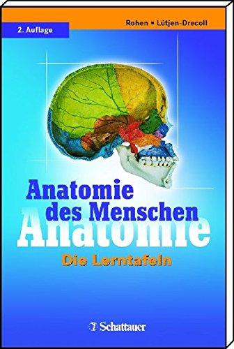 9783794525355: Anatomie des Menschen: Die Lerntafeln