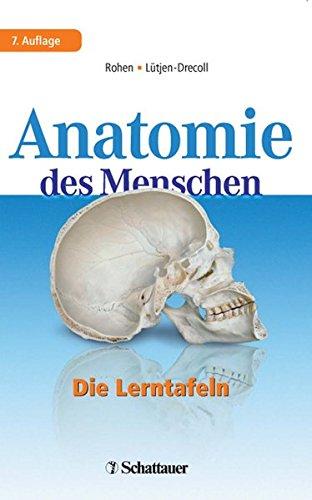Anatomie des Menschen: Die Lerntafeln - Rohen, Johannes W und Elke Lütjen-Drecoll