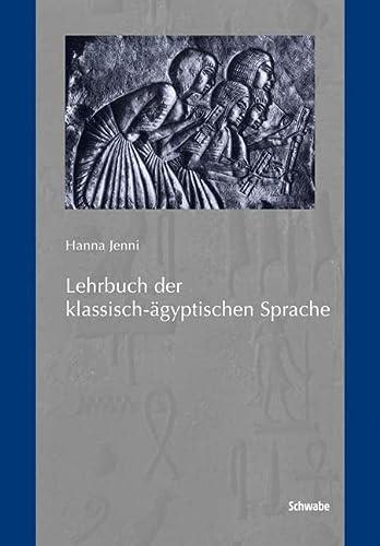 9783796526695: Lehrbuch der klassisch-ägyptischen Sprache