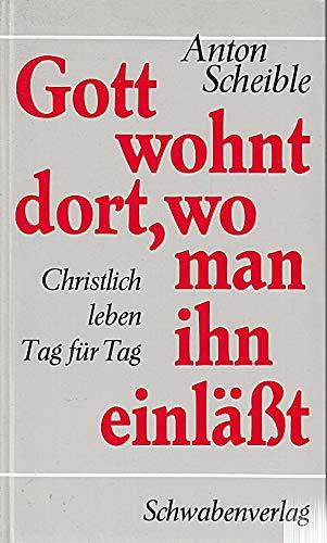 9783796605512: Über das Glauben und den Glauben. 30 Essays