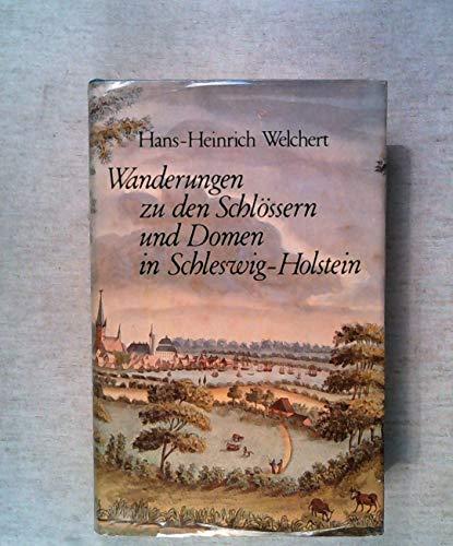9783797303103: Wanderungen zu den Domen und Schlossern in Schleswig-Holstein