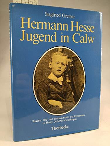 Hermann Hesse. Jugend in Calw. Berichte, Bild- und Textdokumente und Kommentar zu Hesses ...