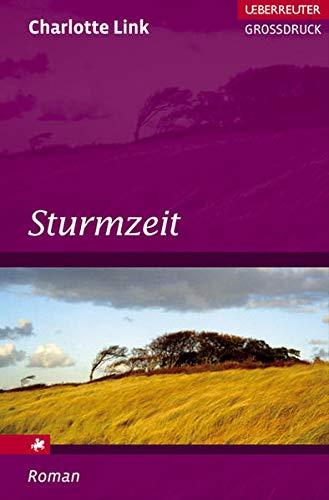 9783800092123: Sturmzeit