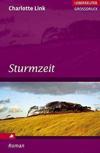 9783800092123: Sturmzeit Roman. Ueberreuter Grossdruck