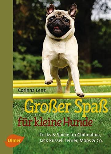 Großer Spaß für kleine Hunde: Tricks &: Corinna Lenz