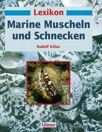 9783800131044: Lexikon Marine. Muscheln und Schnecken